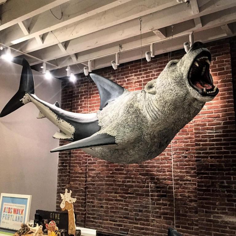 bear_shark